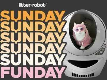 Win Cash Prize by joining Sunday Funday Litter Robot Giveaway you can enter now, by followings terms and conditions to join THIS ONLINE CONTESTS SWEEPSTAKES AND GIVEAWAY PWin Cash Prize by joining Sunday Funday Litter Robot Giveaway you can enter now, by followings terms and conditions to join THIS ONLINE CONTESTS SWEEPSTAKES AND GIVEAWAY P