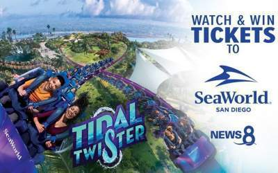 CBS8 Seaworld Watch and Win Contest