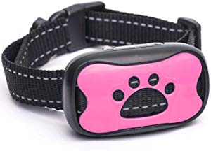 Trust the Paw Bark Collar Giveaway