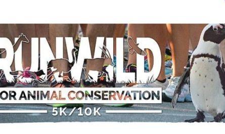 Run Wild 5K/10K Contest