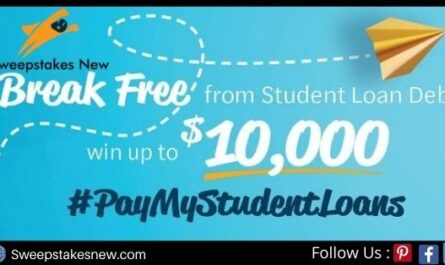 Money Solver Pay My Student Loans Contest
