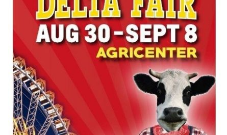 The Delta Fair Sweepstakes