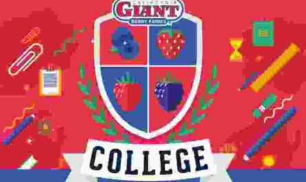 Cal Giant College Sweepstakes