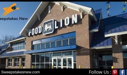 Talk to Food Lion Groceries Survey Sweepstakes