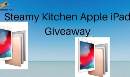 Steamy Kitchen Apple iPad Giveaway