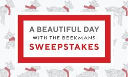 QVC A Beautiful Day With The Beekmans Sweepstakes