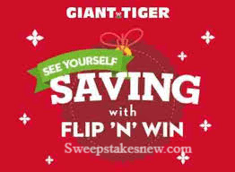 Giant Tiger See Yourself With Flip N' Win Contest