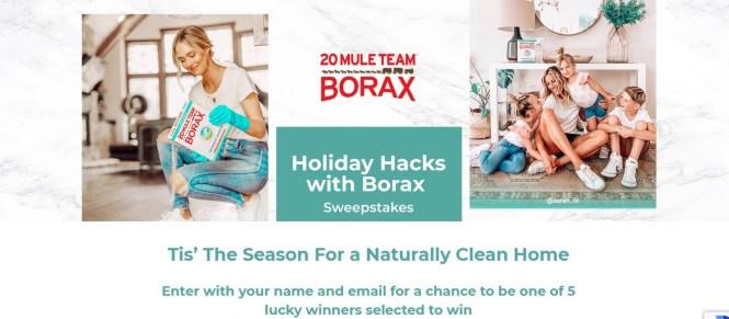 Holiday Hacks With Borax Sweepstakes