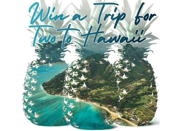 Waiakea Hawaiian Holiday