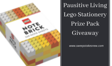 Pausitive Living Lego Stationery Prize Pack Giveaway