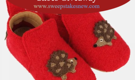 Pausitive living Haflinger Baby Shoes Giveaway
