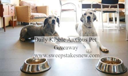 Daily Kibble Anxious Pet Giveaway
