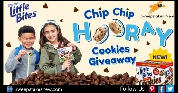 Entenmann's Little Bites National Chocolate Chip Cookie Day Giveaway