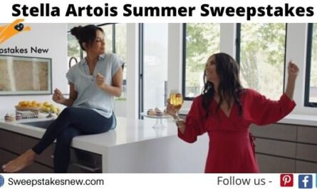 Stella Artois Summer Sweepstakes