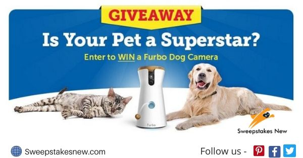 Superstar Pet Sweepstakes