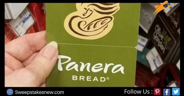Camp Panera Sweepstakes