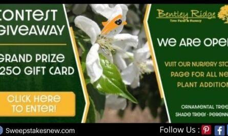 WHO-HD Bentley Ridge Tree Farm Sweepstakes