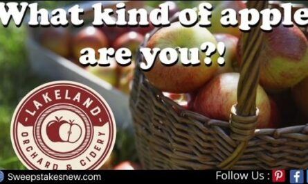 WNEP Lakeland Orchard Apple Quiz Sweepstakes