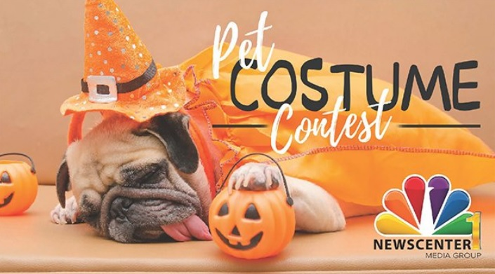 NewsCenter1 Pet Costume Photo Contest