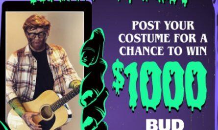 Bud Light Seltzer Virtual Costume Contest