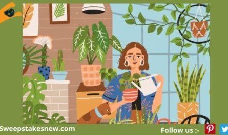 Plant Sanctuary A Home Giveaway