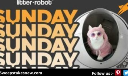 Win a Litter-Robot