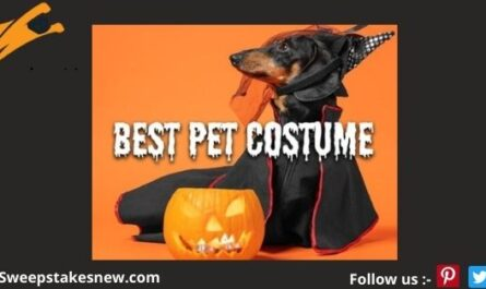 WPRI Best Pet Costume Halloween Photo Contest