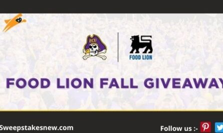 Food Lion Homegater Sweepstakes