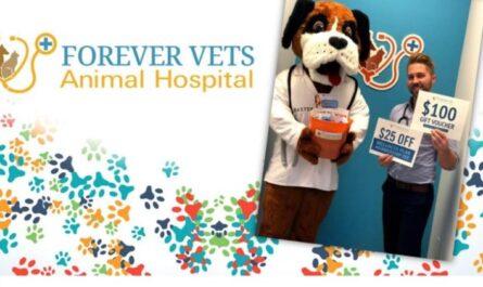 News4Jax Forever Vets Animal Hospital Gives Back Contest