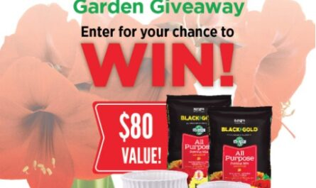 Black Gold Holiday Bulb Garden Giveaway