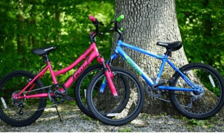Bicycle Corporation Of America Giveaway