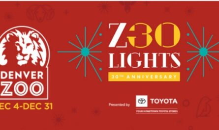 Denver Zoo Lights Sweepstakes