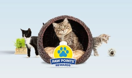 Paw Points FY21 Q3 Multisweeps Sweepstakes