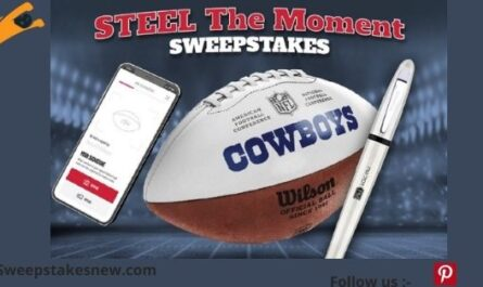 The Zebra Pens Steel The Moment Sweepstakes